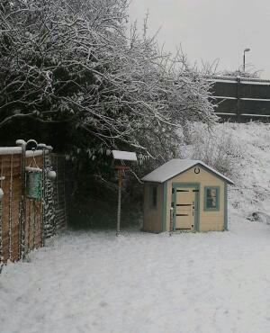 Wendy house snow